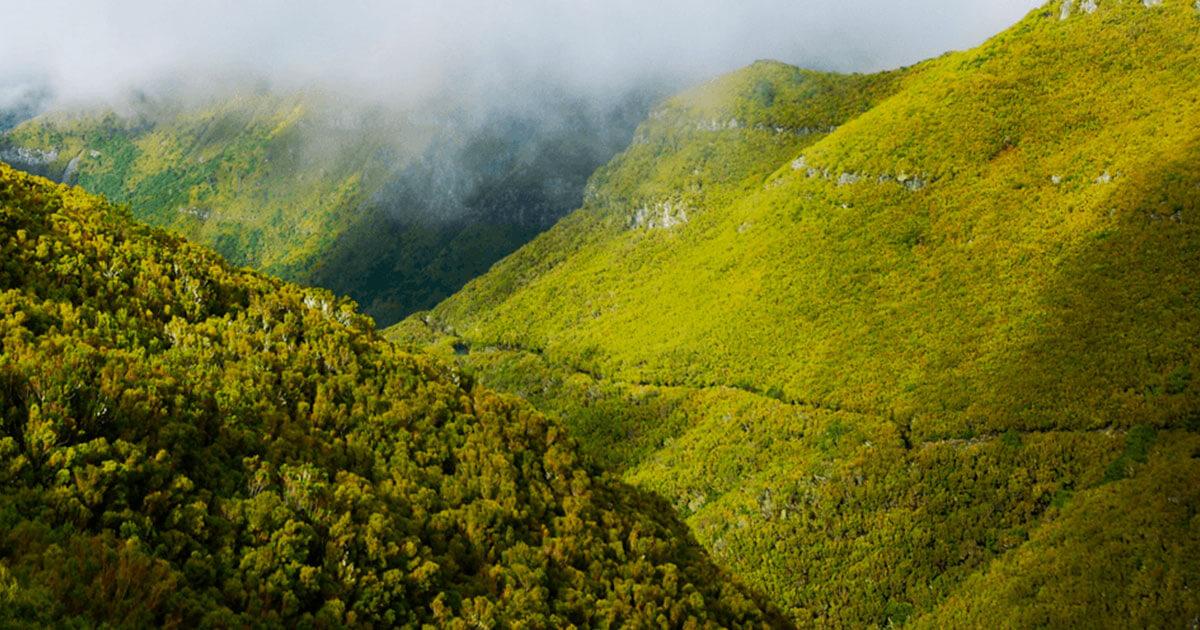 Madeira, Portugal's Little Secret